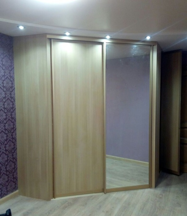 Гардеробные шкафы-купе-Шкаф-купе с зеркалом «Модель 221»-фото1